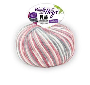 Bild von Woolly Hugs Plan 100g - 81